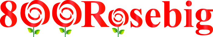 800RoseBig Wedding Florist Mobile Retina Logo