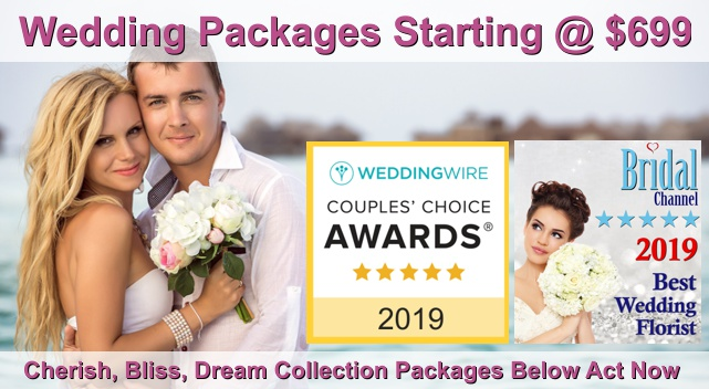 affordable wedding packages available now